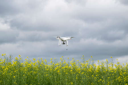 Krasnodar, Russia - May 30, 2017: White drone over the field of flowering rape. Dron against the cloudy sky. The flight of the copter in the sky.