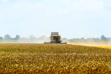 Combine harvesters Agricultural machinery. The machine for harvesting grain crops. Stock Photo