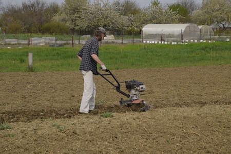 A man plows a tiller in the garden. Spring cultivation of the garden.