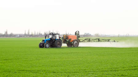 Tractor with high wheels is making fertilizer on young wheat. The use of finely dispersed spray chemicals. Tractor with a spray device for finely dispersed fertilizer. Standard-Bild - 120202327