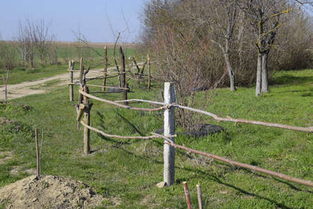 Wooden fence of two crossbars to protect trees from livestock. Foto de archivo