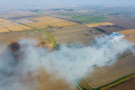 The burning of rice straw in the fields. Smoke from the burning of rice straw in checks. Fire on the field. Stock Photo
