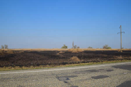 Burned grass along the route, Burning of the steppes the ashes of burnt grass.