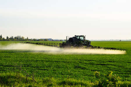 Tractor with the help of a sprayer sprays liquid fertilizers on young wheat in the field. The use of finely dispersed spray chemicals. Stock fotó