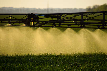 Jets of liquid fertilizer from the tractor sprayer. Tractor with the help of a sprayer sprays liquid fertilizers on young wheat in the field. The use of finely dispersed spray chemicals. 版權商用圖片