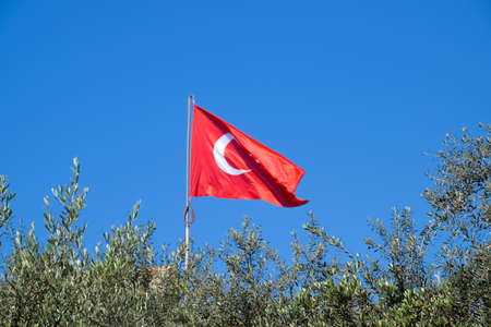 Turkish flag against the blue sky and the tops of the trees. Stock Photo - 124529583