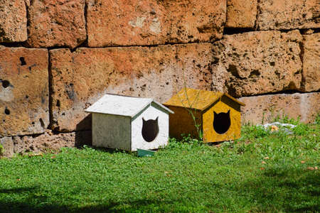Houses for cats on the lawn near the wall. Cat house Stock Photo - 124529570