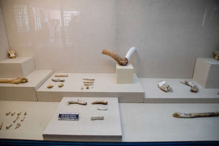 Antalya, Turkey - May 19, 2019: Exhibits of the Antalya Museum of Antiquities, stone scrapers and knives and pottery. Redactioneel