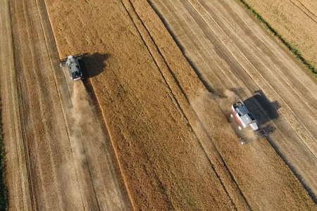 Combine harvester harvest barley. Strada on the field Stock fotó