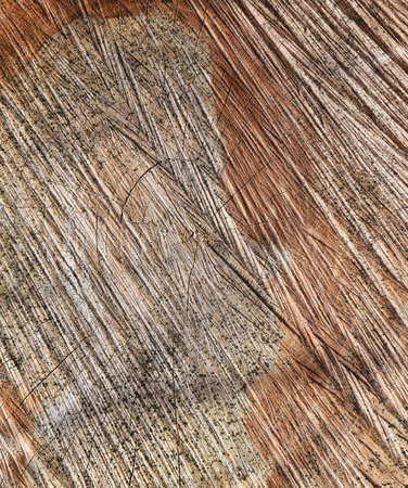 Texture of a saw cut of a log. The sawn tree and its year rings. Archivio Fotografico - 129272839