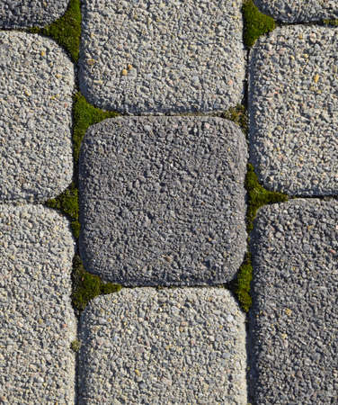 Industrial building background of paving slabs with overgrown with moss in the cracks. Texturing background. Stockfoto - 129488055