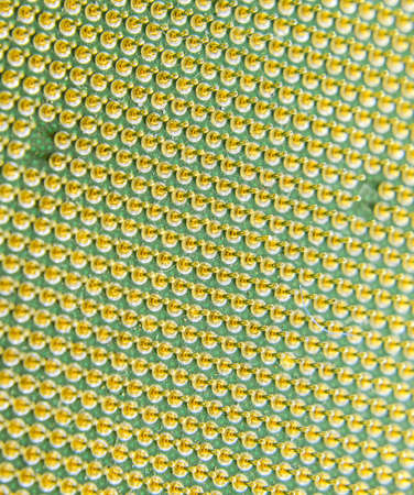Computer processor, contact feet. Electronic board with electrical components. Electronics of computer equipment. Stock fotó