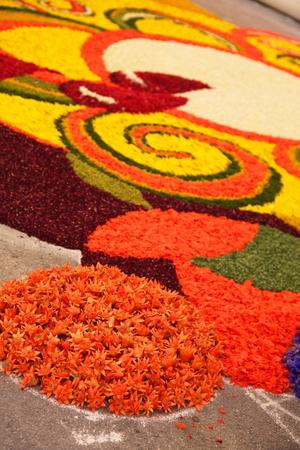infiorata di spello - disegni  con petali di fiori freschi