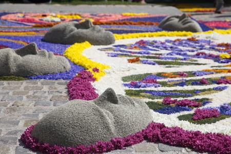 composizioni floreali per la manifestazione infiorata di spello