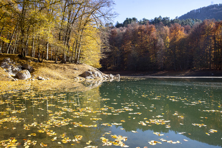 Sevenlakes National Park in Autumn Bolu Turkey. Yedigoller milli parkı