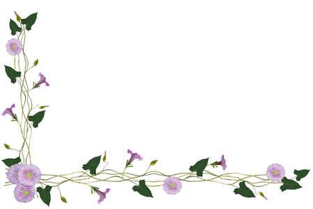 bindweed: Bindweed frame with plant Stock Photo