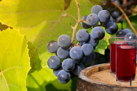 Grape and juice Stock Photo