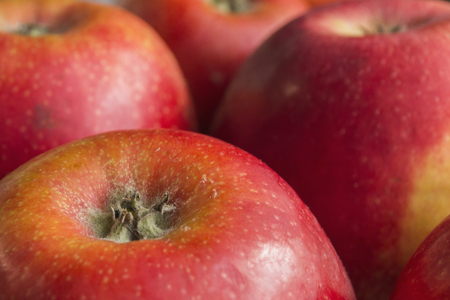 ripe: Ripe apple