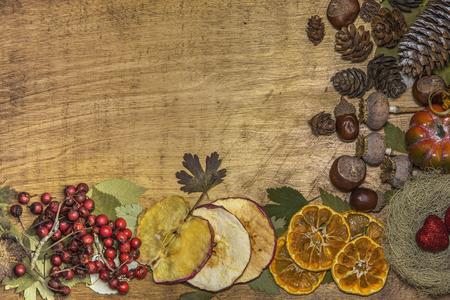 Autumn background with dried plants Archivio Fotografico