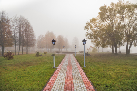 Autumn in the Park and fog Stock Photo