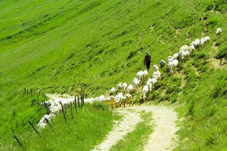 Castelluccio von Norcia Umbrien Italien Standard-Bild - 12545724