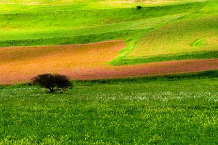 Umbria Norcia Castelluccio photo