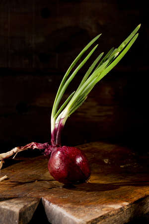 indispensable: Indispensable Ingredient In Mediterranean Cuisine, Red Onion