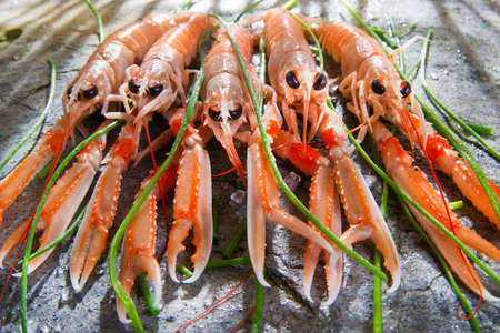 Marine Product Presentation And Preparation Of The Crayfish photo
