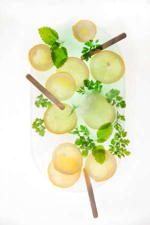 sour grass: Slices of lemon with mint leaves and sprigs of parsley Stock Photo