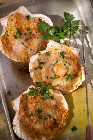 Presentation of scallops au gratin baked with parsley