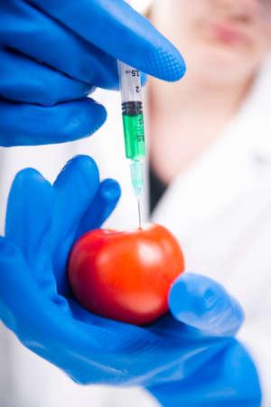 clonacion: Presentación de la fase de laboratorio a la práctica de los OMG