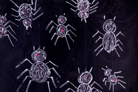 arachnophobia: Graphic representation with chalk on the blackboard of arachnophobia fear of spiders Stock Photo