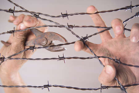 prisoner of war: Hands gripping the barbed wire in the sign to run away with the white background