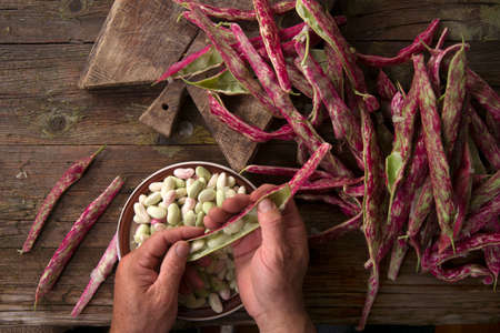 shelling: Representation of the time that the hands are busy shelling beans
