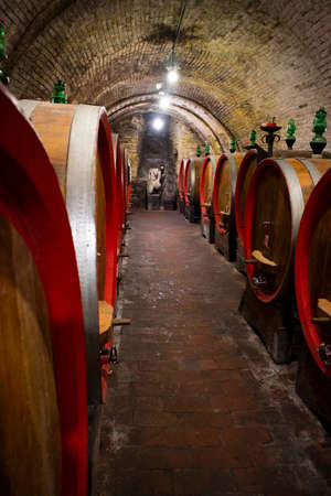 Ancient underground cellar with wooden barrels for the best conservation of wine 免版税图像