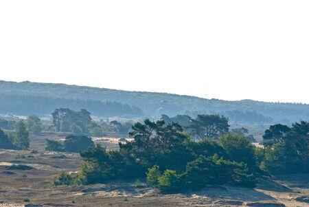 Kootwijkerzand is een beschermd natuurgebied in Nederland