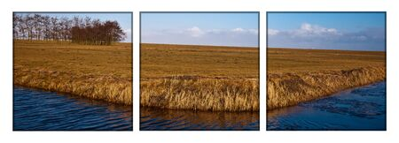 Panoramic Landscape of the dutch wetlands photo