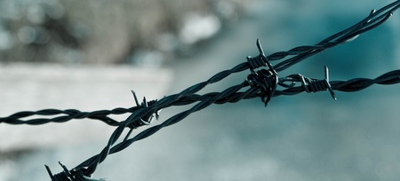 close up Barbed wire Fence and clear sky 免版税图像 - 16275029