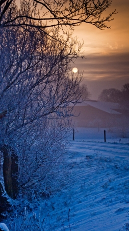 solstice: winter landscape Stock Photo