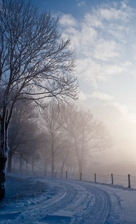Vaus winter landscapes in the Netherlands Stock Photo - 16275127