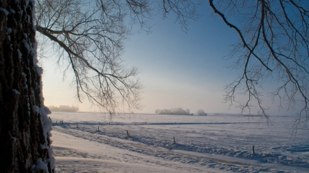 Various winter landscapes in the Netherlands Stock Photo - 16275091