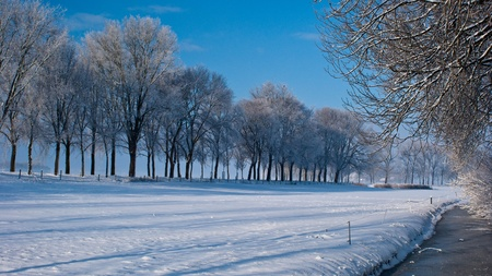 Various winter landscapes in the Netherlands photo