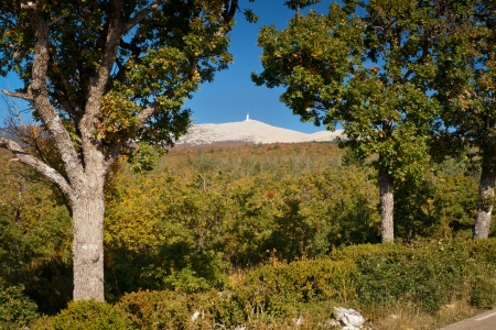 bedoin: The road of Bedoin, climbing Mount Ventoux, Vaucluse, France
