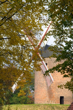 The oldest Dutch grain windmill on a small hill photo