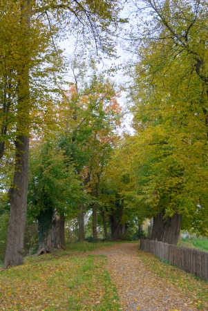 walking path: A Walking Path And Fence in a park Along  A Castle in the Netherlands at Autumn
