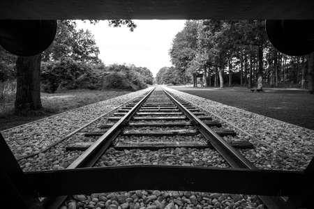 Westerbork 교통 캠프 (네덜란드어 : 독일어 캠프 Westerbork : Durchgangslager Westerbork)는 북동부 네덜란드 십km 북쪽 Westerbork의 Hooghalen에서 차 세계 대전 나치 난 스톡 콘텐츠