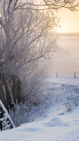 sub zero: A rural road on a dutch dike, just before the break of dawn on a winter morning