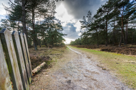 fencepost: Dirt road with a wooden gate in a rural landscape at the Netherlands