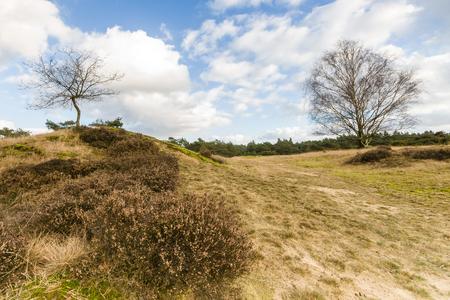 paisaje naturaleza: El deterioro de las nubes meteorol�gicas sobre el paisaje natural protegida en la primavera