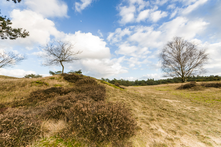 deteriorating: Deteriorating weather clouds over protected nature landscape in Spring Stock Photo